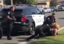 Εξοργιστικό βίντεο με αστυνομικό που ρίχνει γροθιές στο πρόσωπο γυναίκας με χειροπέδες